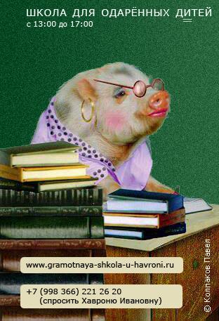 Год свиньи поздравления картинки